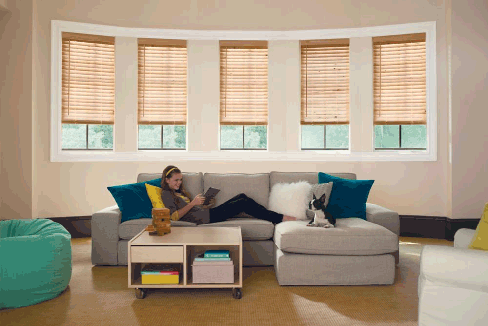 Levolor Faux wood blinds